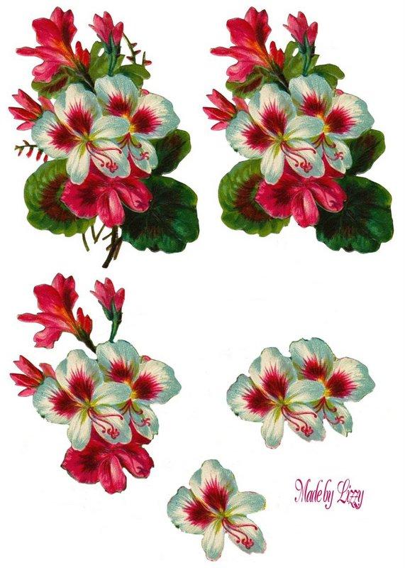 planche 3d fleur - page 2